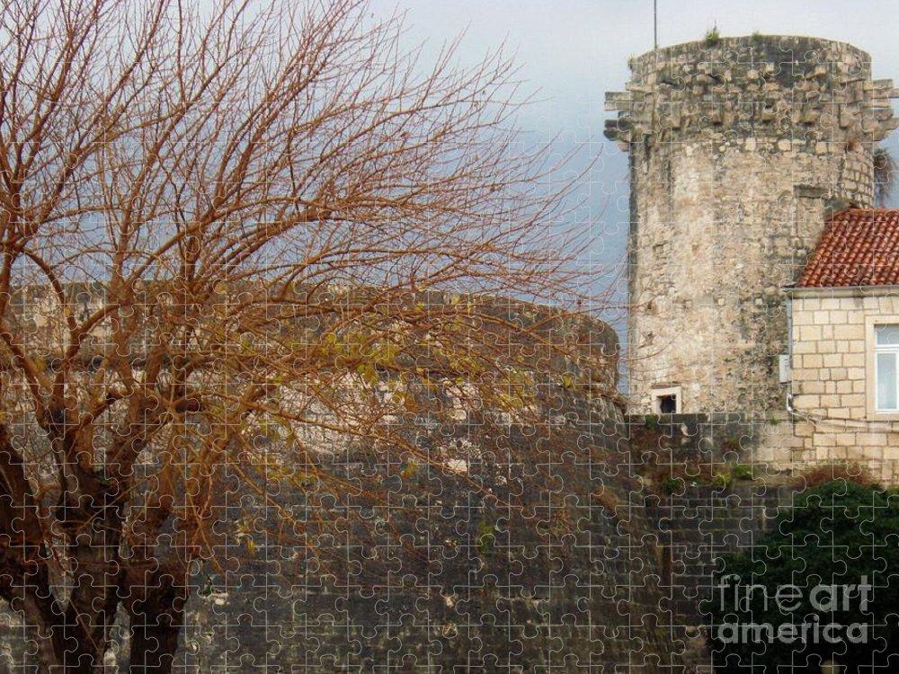 Winter Puzzle featuring the photograph Wonderful winter... by De La Rosa Concert Photography