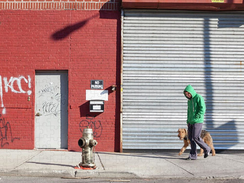 Pets Puzzle featuring the photograph Young Man Walks Dog by Alex Potemkin