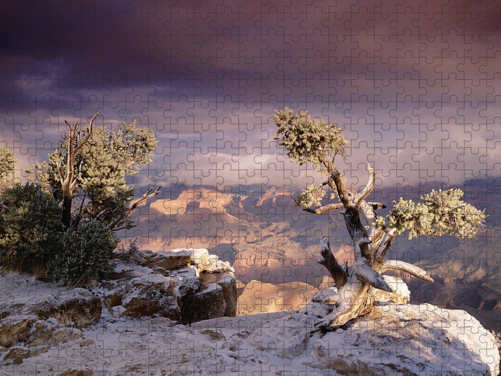 00173197 Puzzle featuring the photograph South Rim Of Grand Canyon by Tim Fitzharris