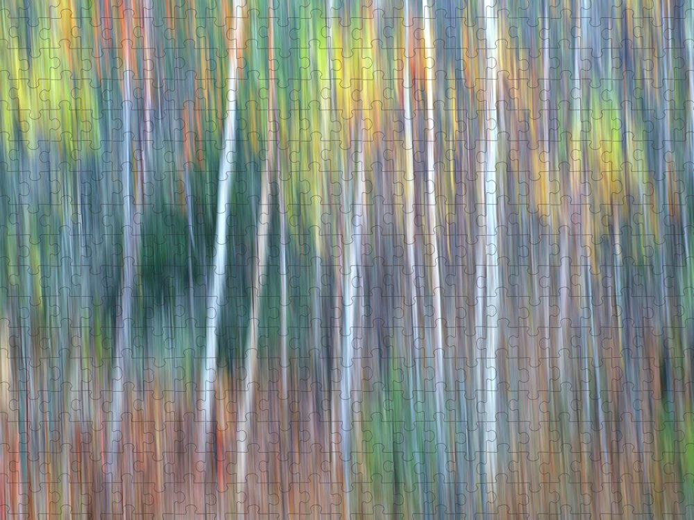 Forest Pastels Form An Autumn Impression Puzzle featuring the photograph Autumn Impression by Bill Morgenstern