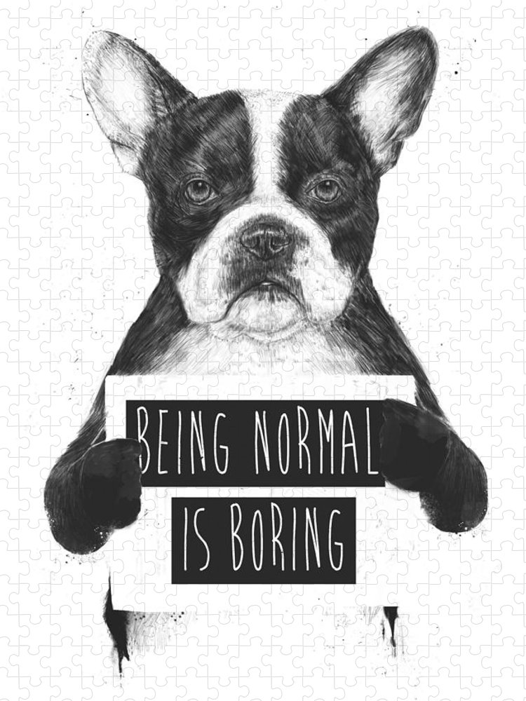 Bulldog Puzzle featuring the drawing Being normal is boring by Balazs Solti