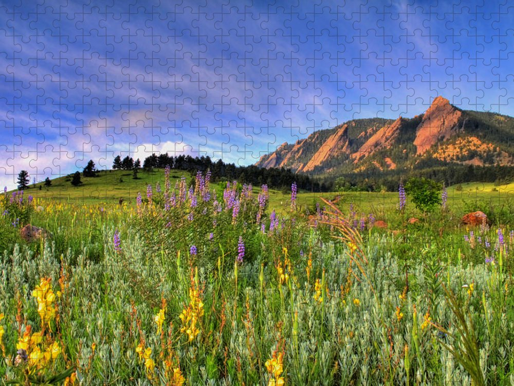 Colorado Puzzle featuring the photograph Colorado Wildflowers by Scott Mahon