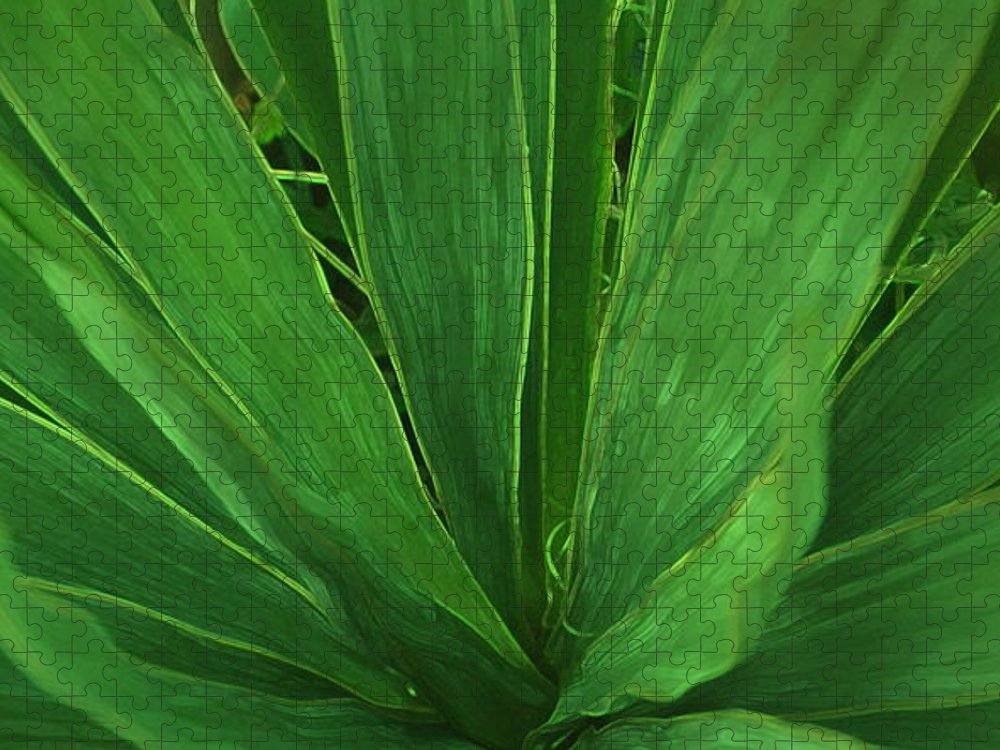 Green Plant Puzzle featuring the photograph Green Glow by Linda Sannuti