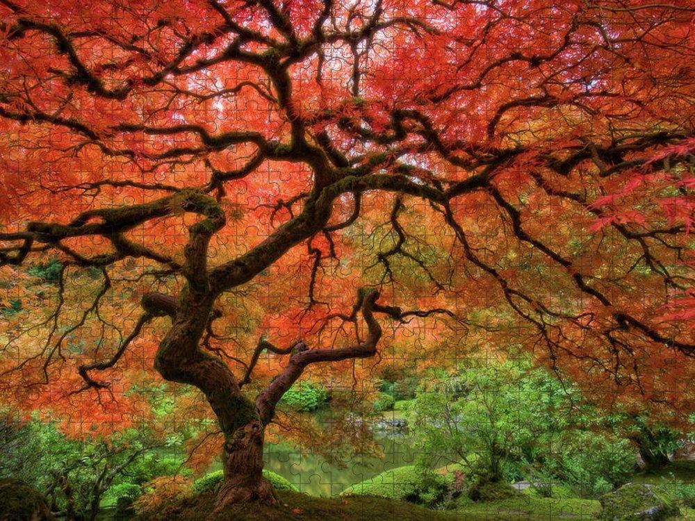 Horizontal Puzzle featuring the photograph Japenese Garden, Portland by Jesse Estes