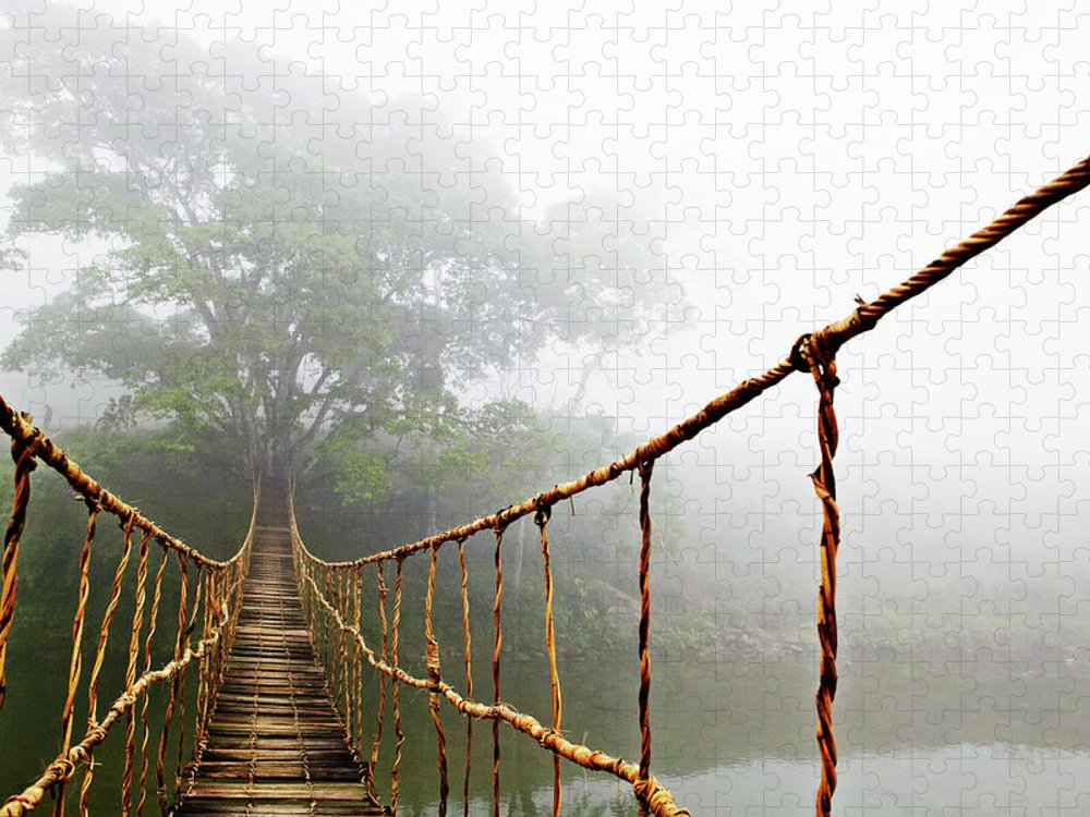 Rope Bridge Puzzle featuring the photograph Jungle Journey by Skip Nall