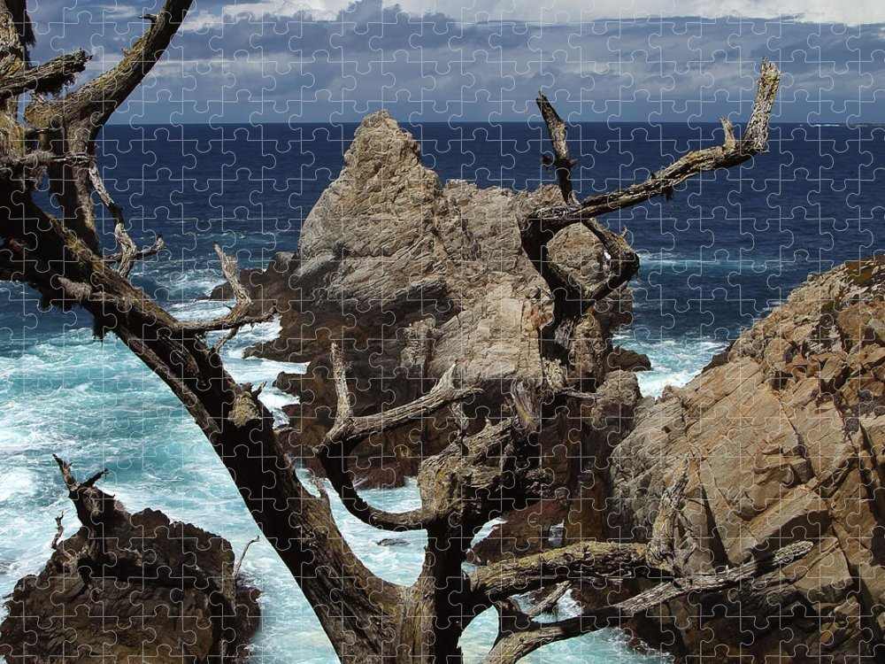 Carmel Puzzle featuring the photograph Point Lobos Rocks and Branches by Charlene Mitchell