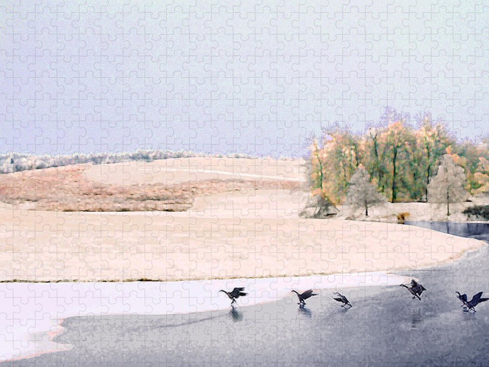 Landscape Puzzle featuring the photograph Powell Gardens in Winter by Steve Karol