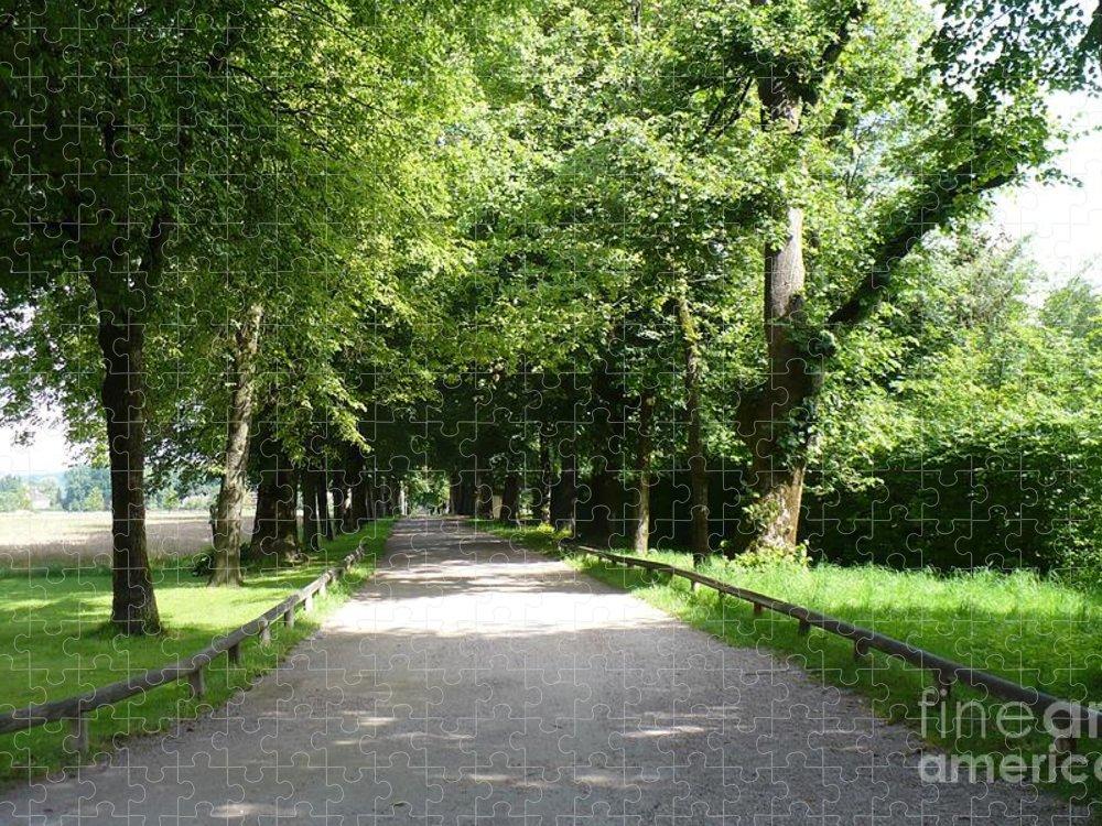 Austria Puzzle featuring the photograph Salzburg Lane by Carol Groenen