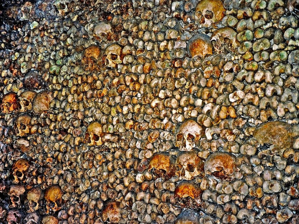 Skulls Puzzle featuring the photograph Skulls and Bones under Paris by Juergen Weiss