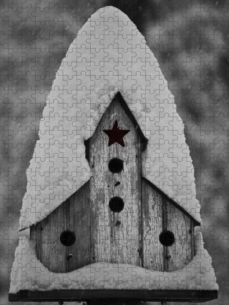 Snow Puzzle featuring the photograph Snow Covered Birdhouse by Teresa Mucha