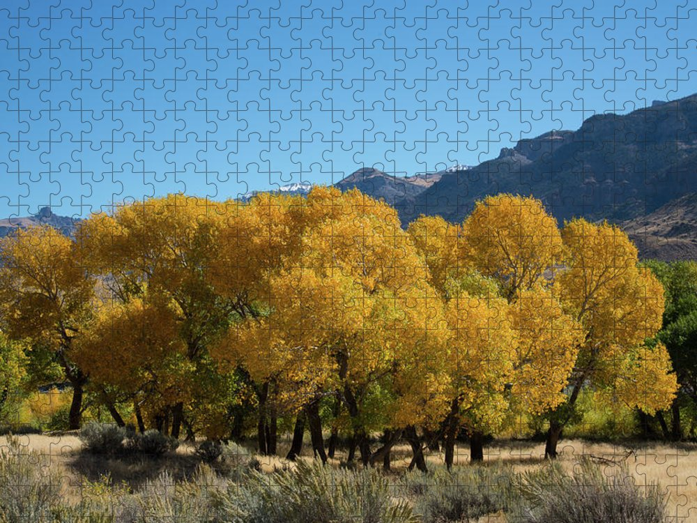 Cody Puzzle featuring the photograph Tranquility in Golds and Yellows by Frank Madia