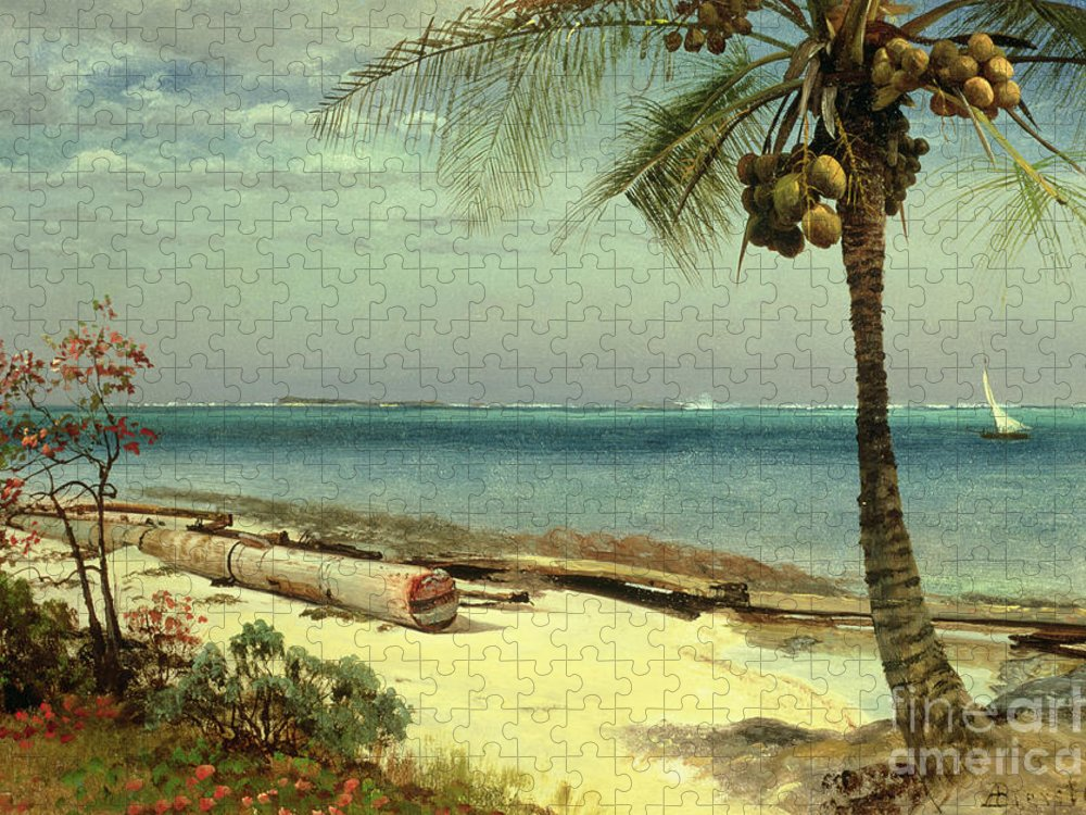 Shore; Exotic; Palm Tree; Coconut; Sand; Beach; Sailing Puzzle featuring the painting Tropical Coast by Albert Bierstadt