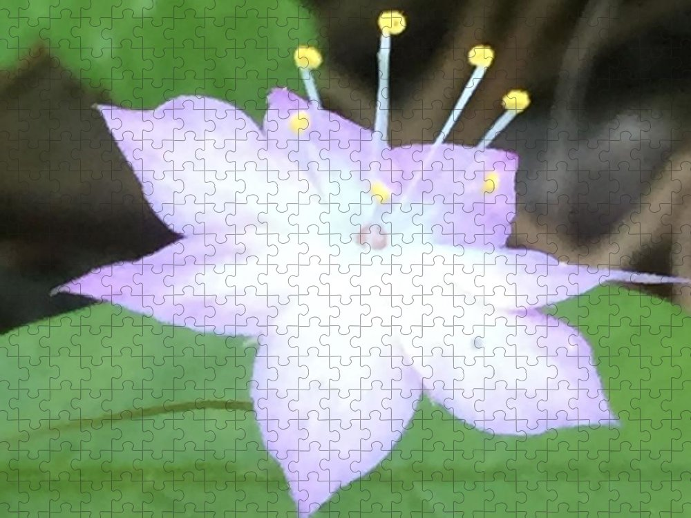 Flower Puzzle featuring the photograph Wildflower Salute by Vonda Drees
