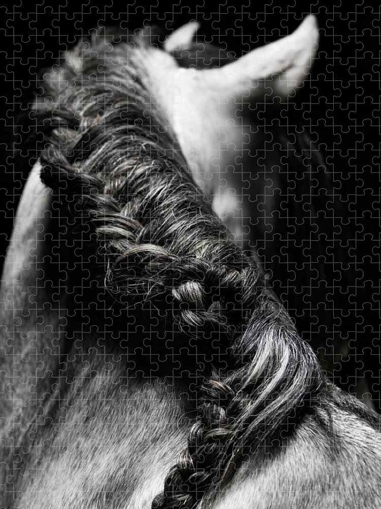 Horse Puzzle featuring the photograph Braided Mane Of Grey Horse by Henrik Sorensen