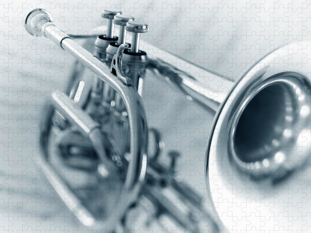 Sheet Music Puzzle featuring the photograph Cornet by Adam Gault