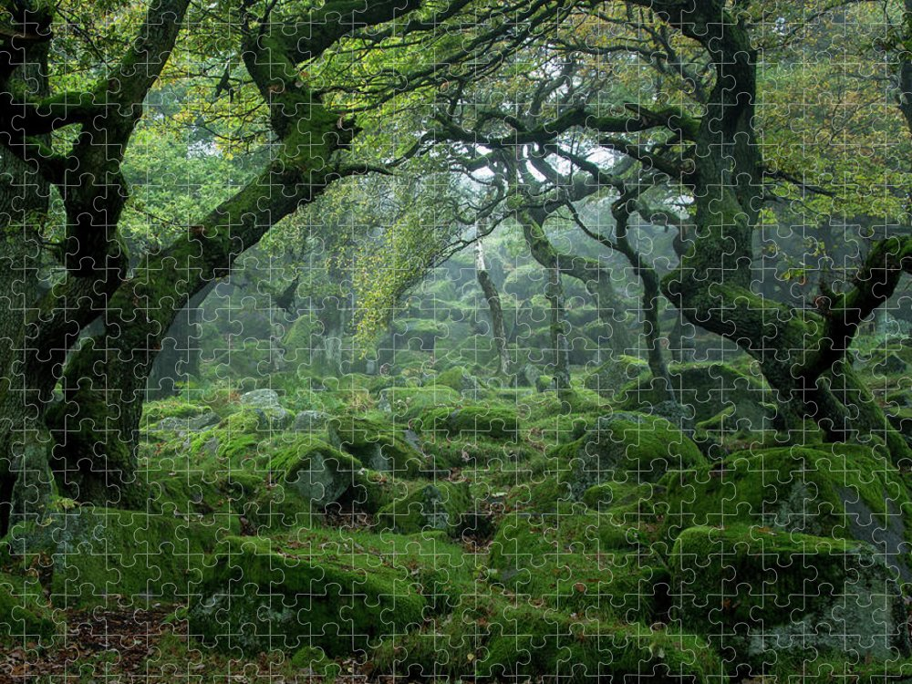 Tranquility Puzzle featuring the photograph Padley Gorge by Duncan Fawkes