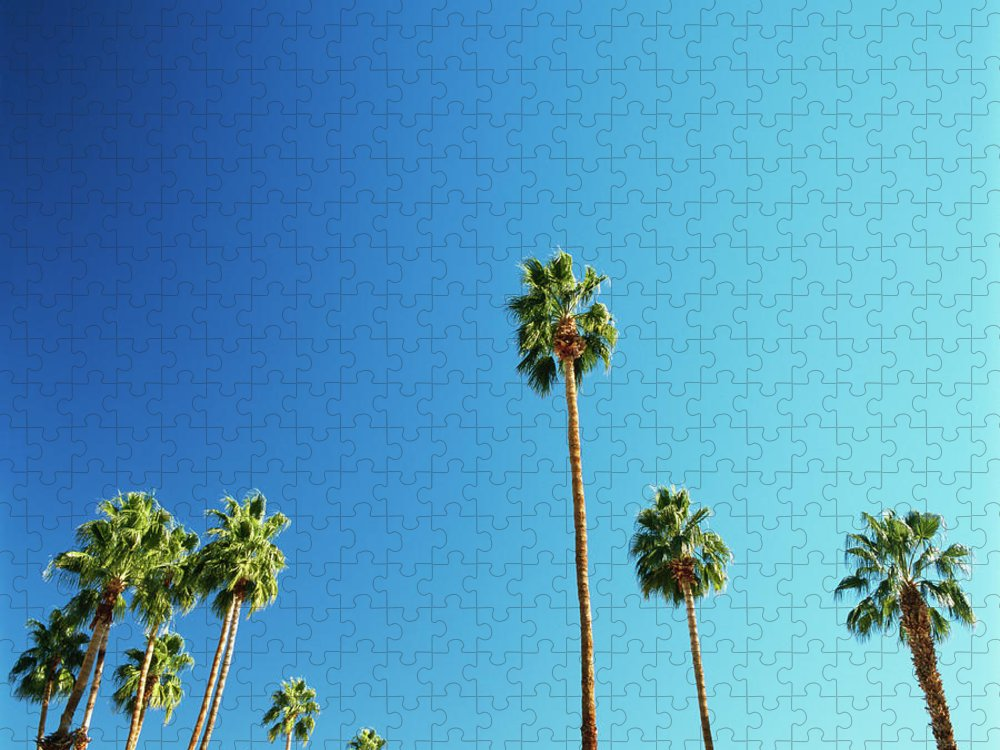 Clear Sky Puzzle featuring the photograph Palm Trees Against Blue Sky by Micha Pawlitzki