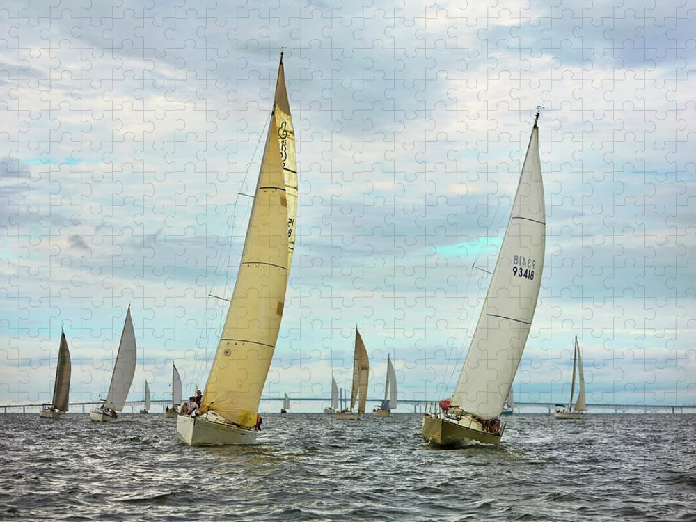 Wind Puzzle featuring the photograph Sail Boats Racing, Chesapeake Bay by Greg Pease