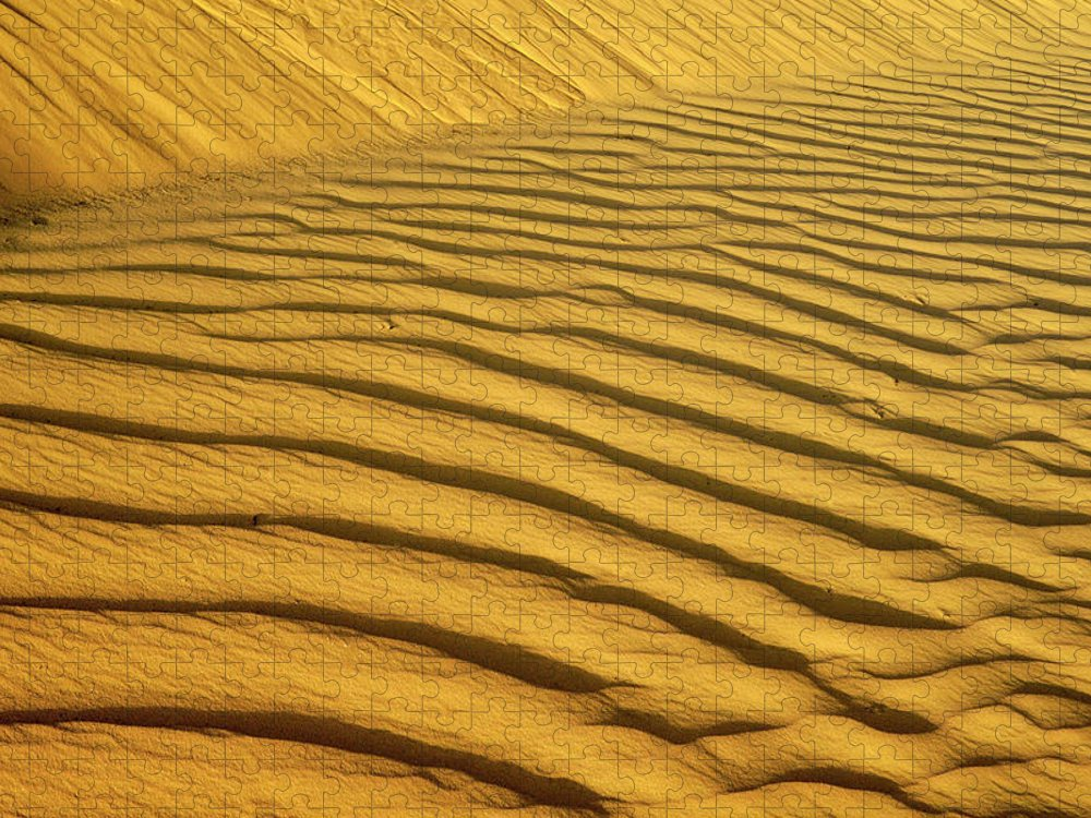 Sand Dune Puzzle featuring the photograph Sand Dune, Negev Desert, Israel by Photostock-israel