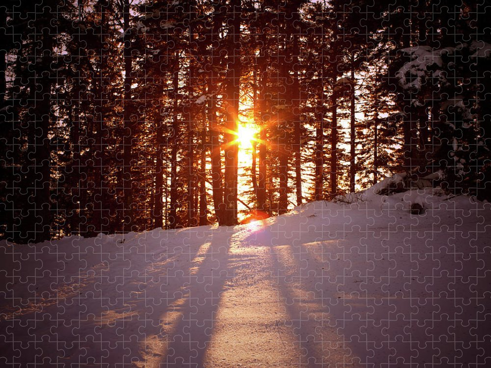 Scenics Puzzle featuring the photograph Winter Sunset by Borchee