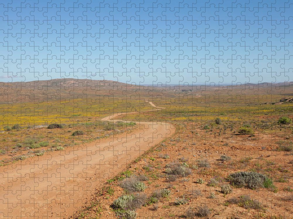 Outdoors Puzzle featuring the photograph A Dirt Road Winds Through The Barren by Anthony Grote