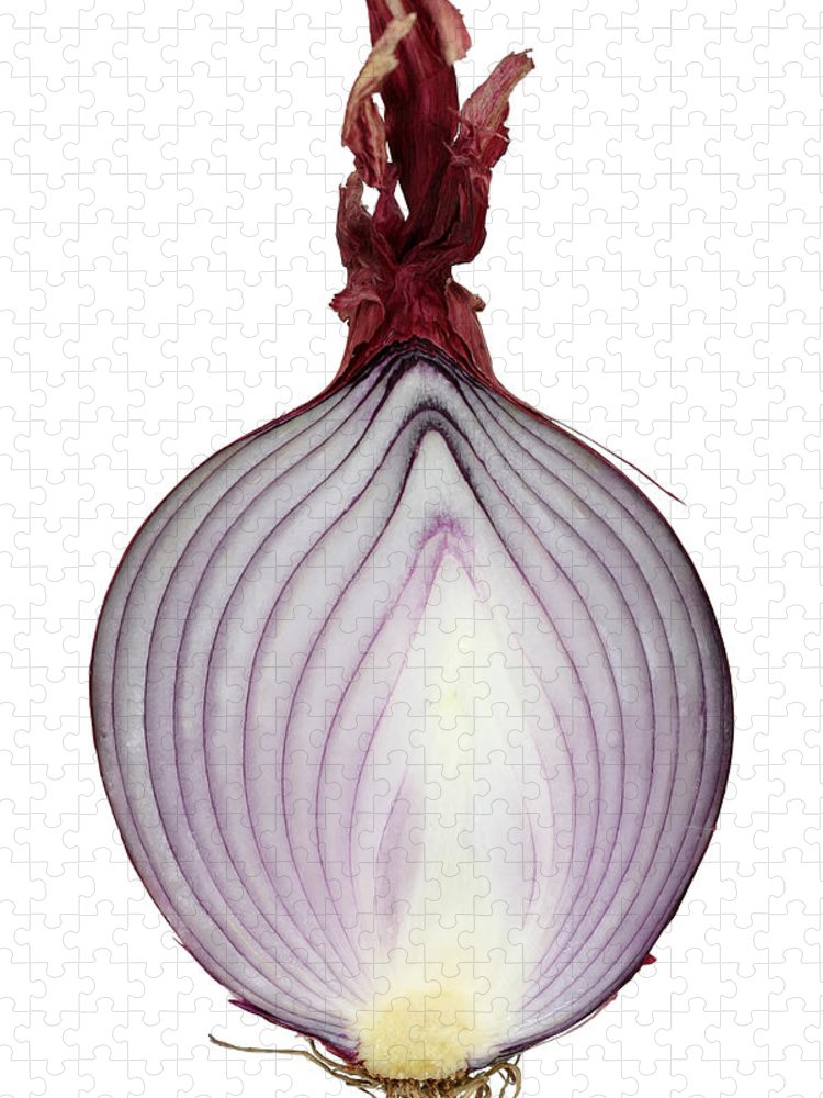 White Background Puzzle featuring the photograph A Red Onion Cut In Half On White by Suzifoo