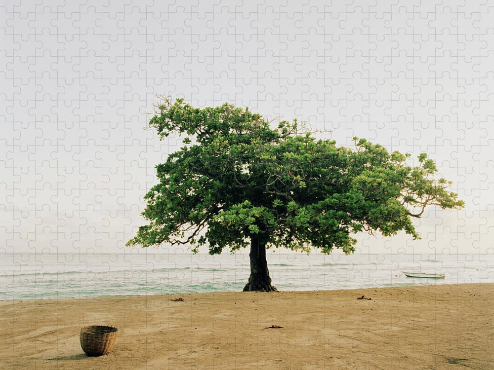 Tranquility Puzzle featuring the photograph A Tree On The Beach At Petit-goave by Cultura Exclusive/philip Lee Harvey