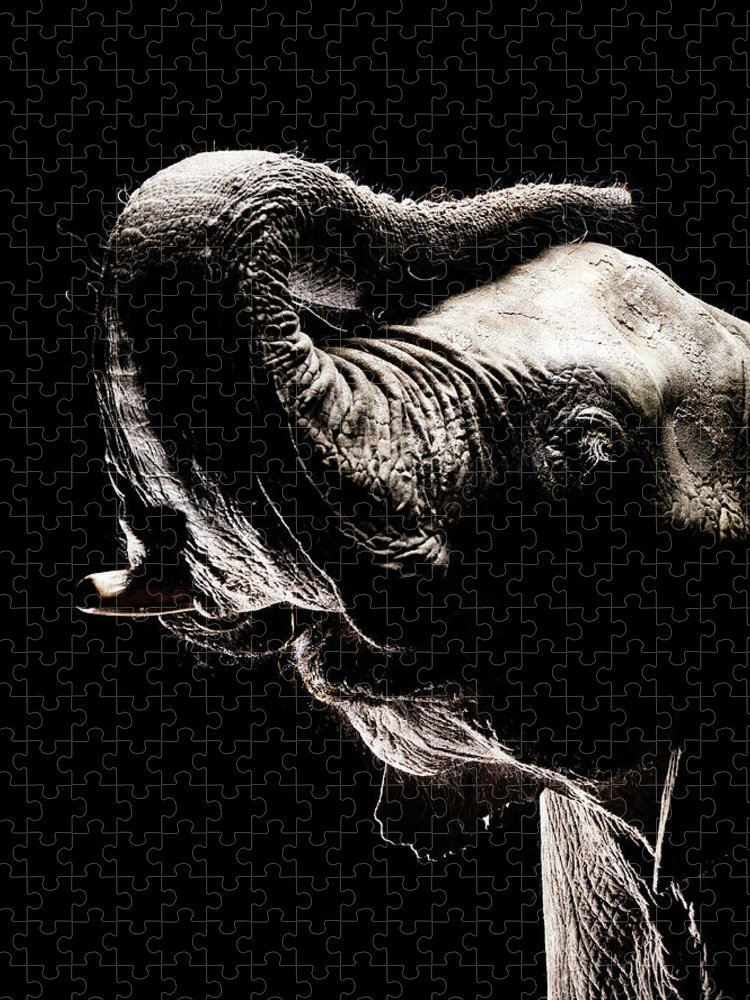 Animal Trunk Puzzle featuring the photograph African Elephant With The Trunk Raised by Henrik Sorensen