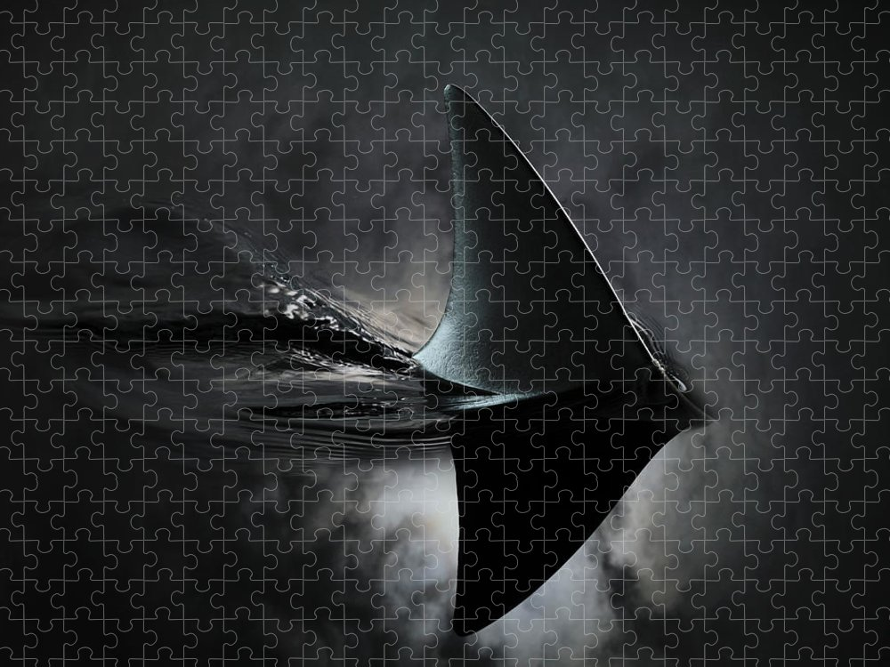 Risk Puzzle featuring the photograph An Image Of A Shark Fin Against Moon by Jonathan Knowles