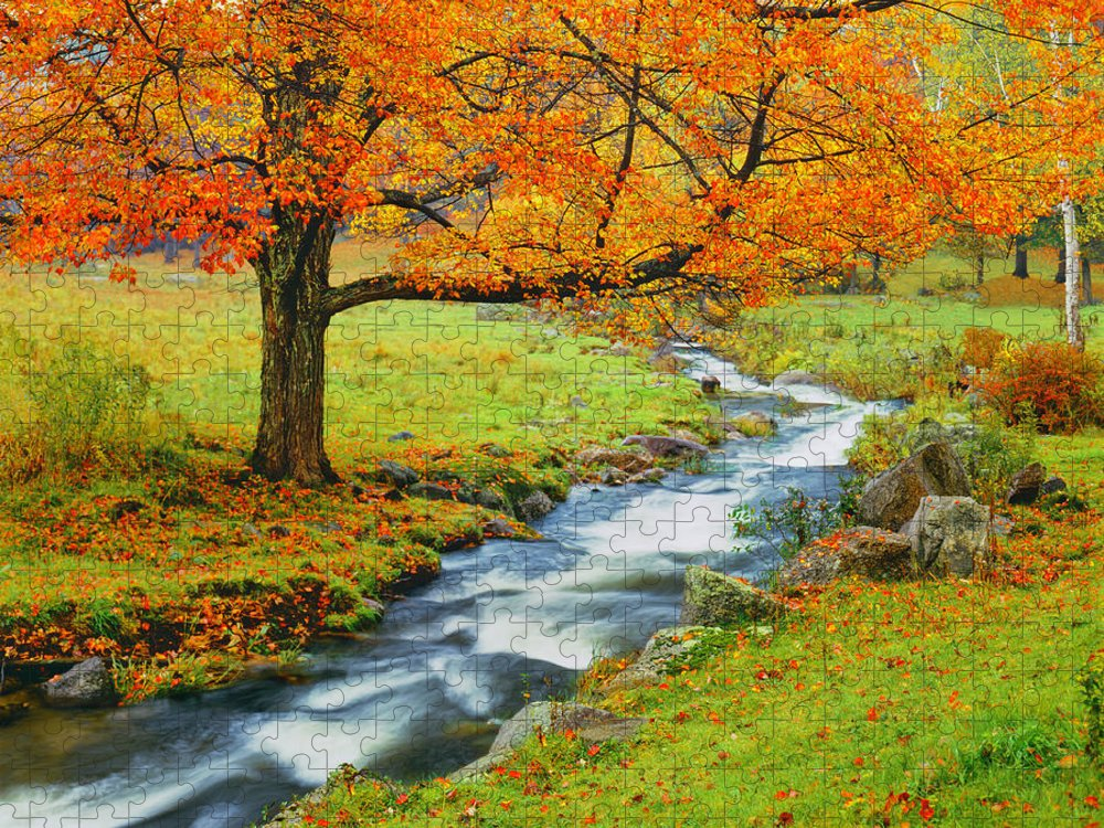 Scenics Puzzle featuring the photograph Autumn In Vermont G by Ron thomas