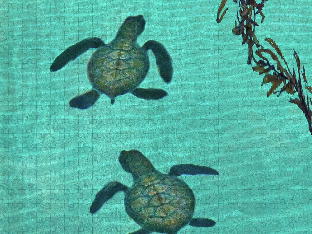 Seaweed Puzzle featuring the photograph Baby Sea Turtles by Melinda Moore