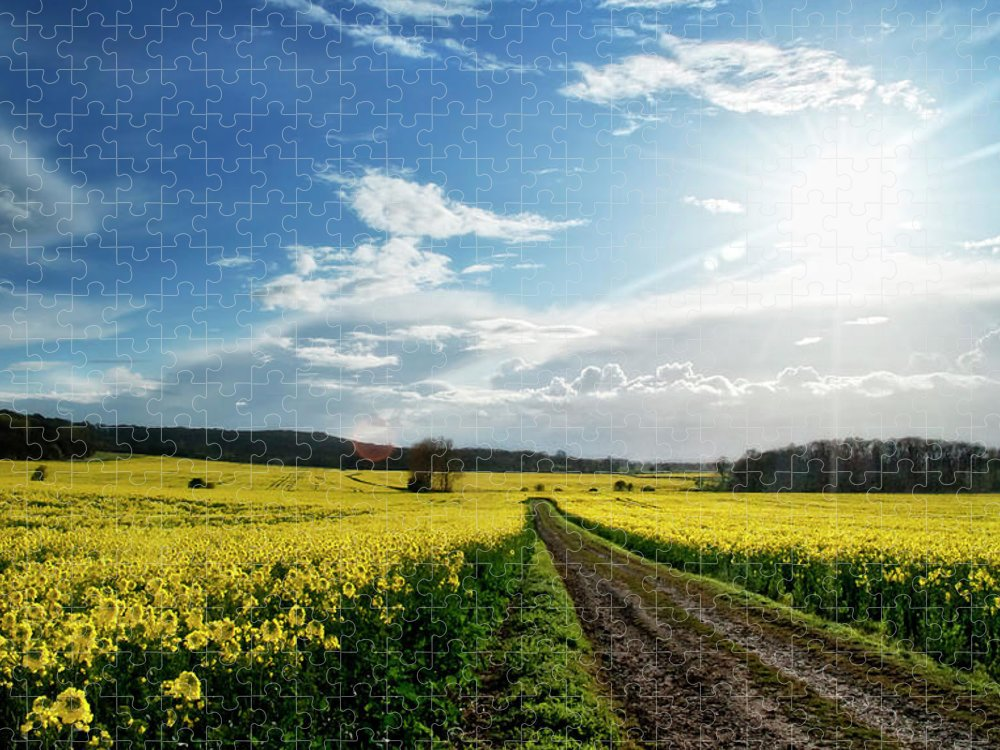 Tranquility Puzzle featuring the photograph Belvoir Fields by Petertowle