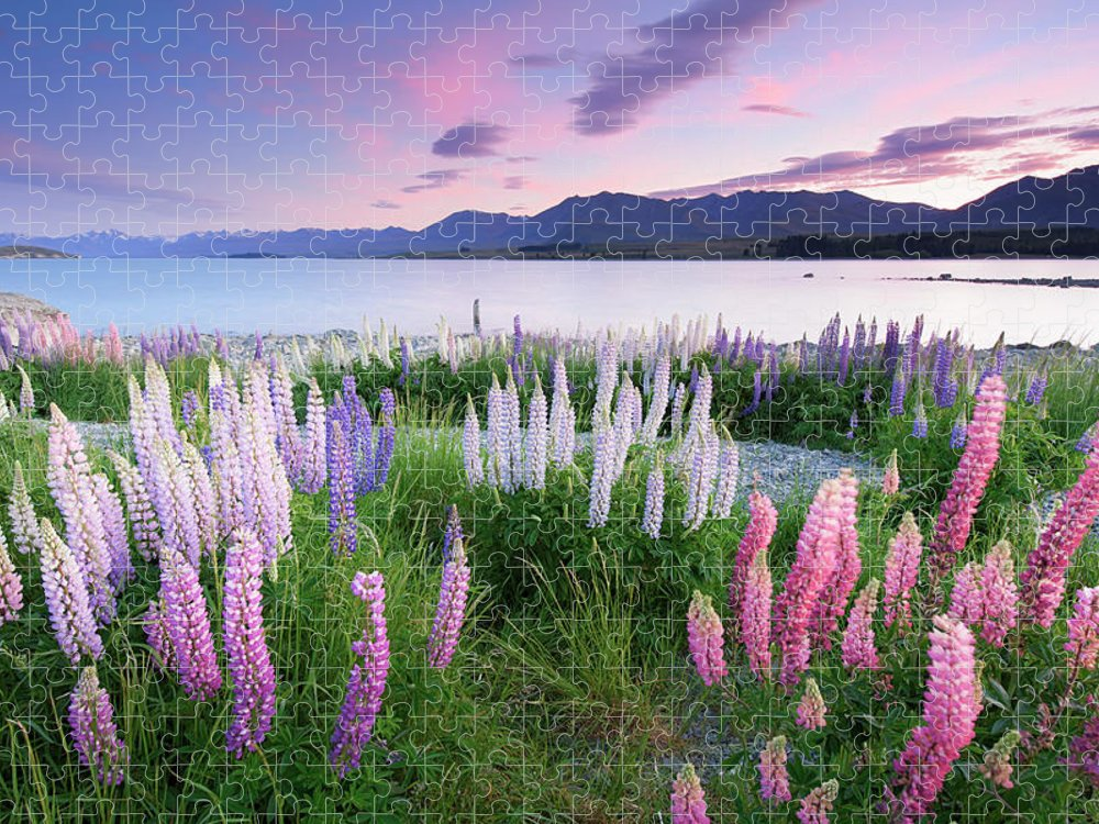 Dawn Puzzle featuring the photograph Berry Dawn At Lake Tekapo, New Zealand by Atomiczen