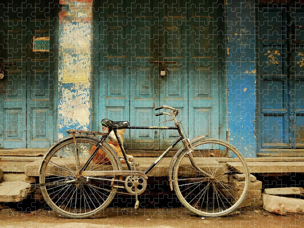 Animal Themes Puzzle featuring the photograph Bicycle Blues by Suman Roychoudhury