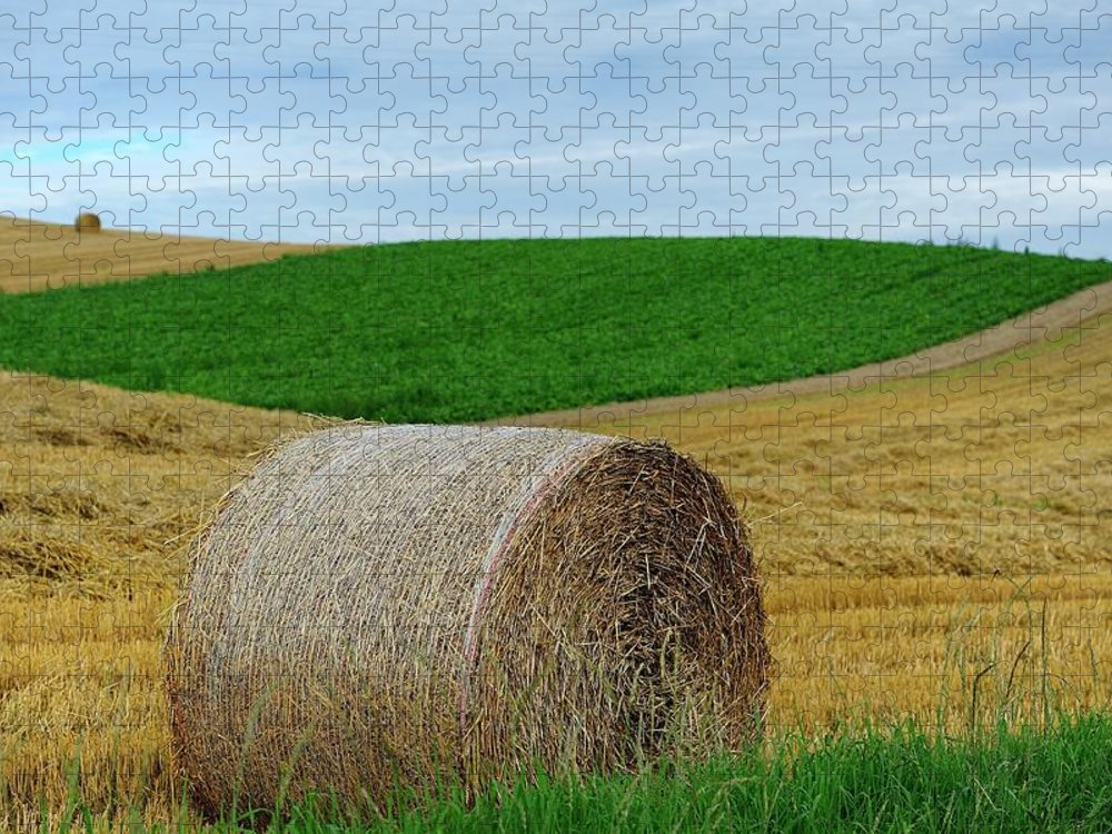Tranquility Puzzle featuring the photograph Biei...patchwork Road by By Alan Tsai