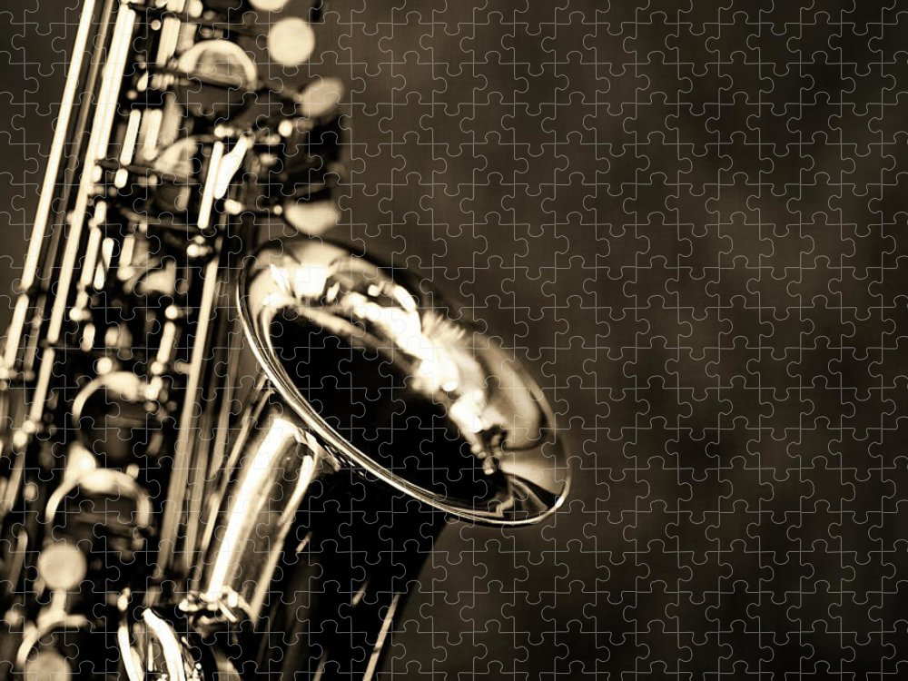 Rock Music Puzzle featuring the photograph Black And White Close Up Of Alto by Rapideye