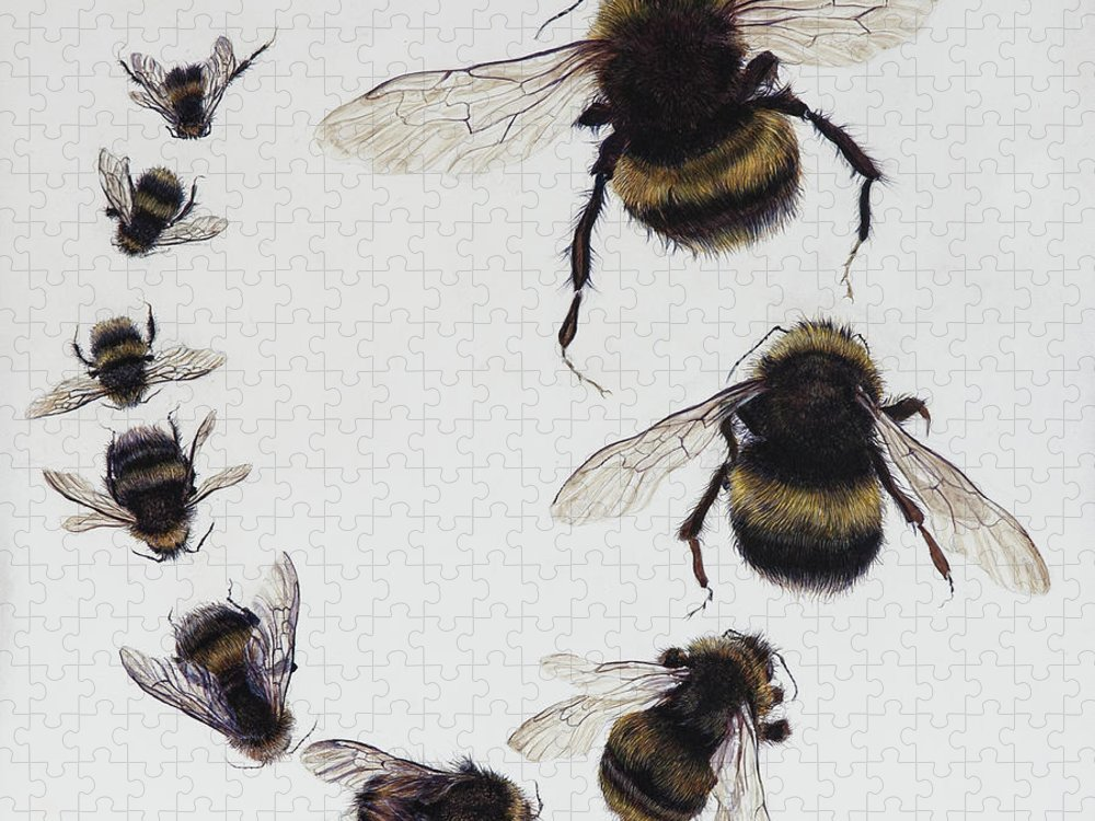 Nature Puzzle featuring the painting Bombus by Odile Kidd