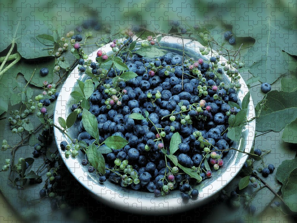 Crockery Puzzle featuring the photograph Bowl Of Blueberries by Atu Images