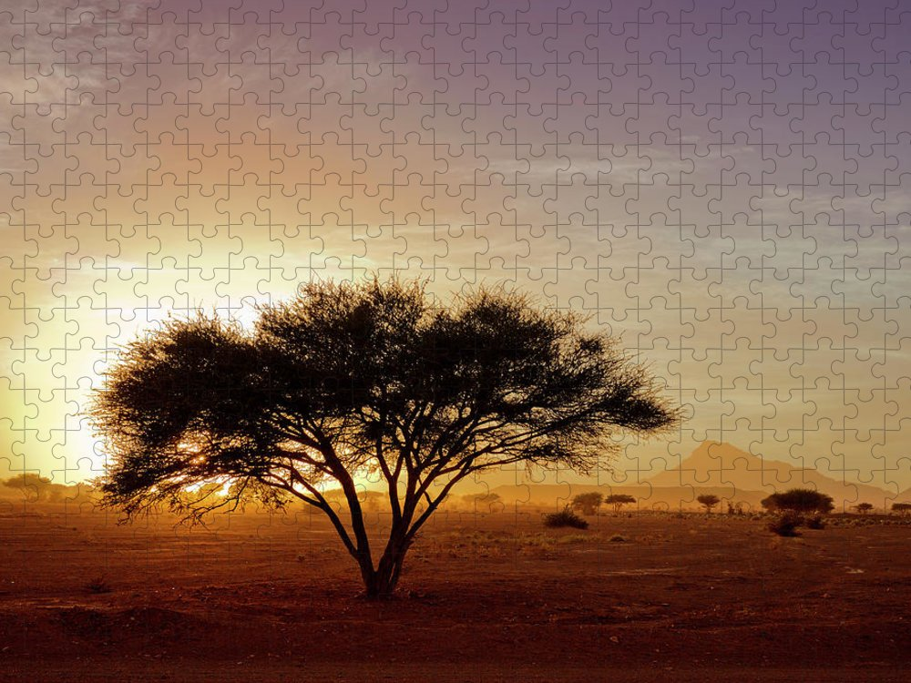 Tranquility Puzzle featuring the photograph Burning Desert by Bernd Schunack