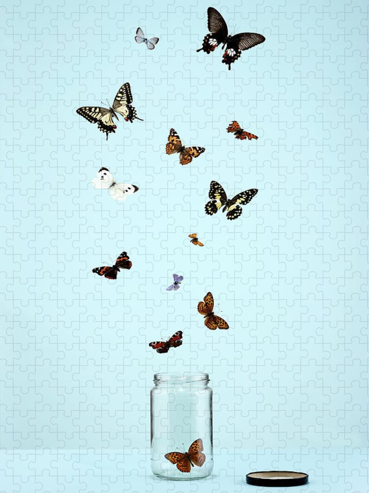 Animal Themes Puzzle featuring the photograph Butterflies Escaping From Jar by Martin Poole