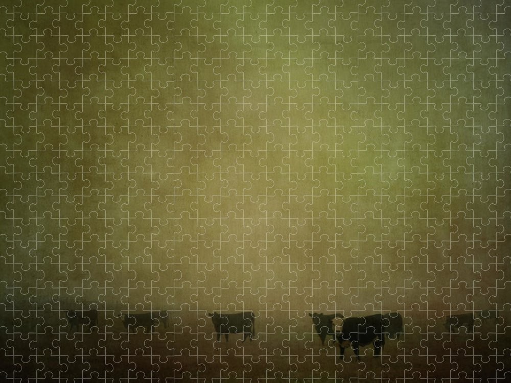 Pets Puzzle featuring the photograph Cattle In The Mist by Jill Ferry