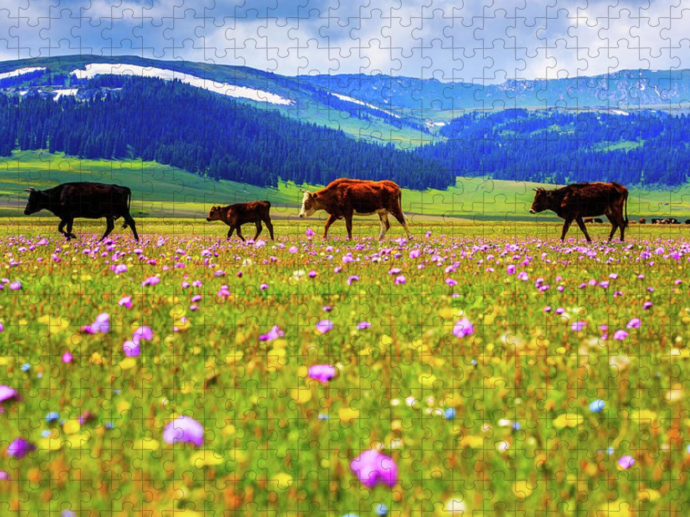 Tranquility Puzzle featuring the photograph Cattle Walking In Grassland by Feng Wei Photography
