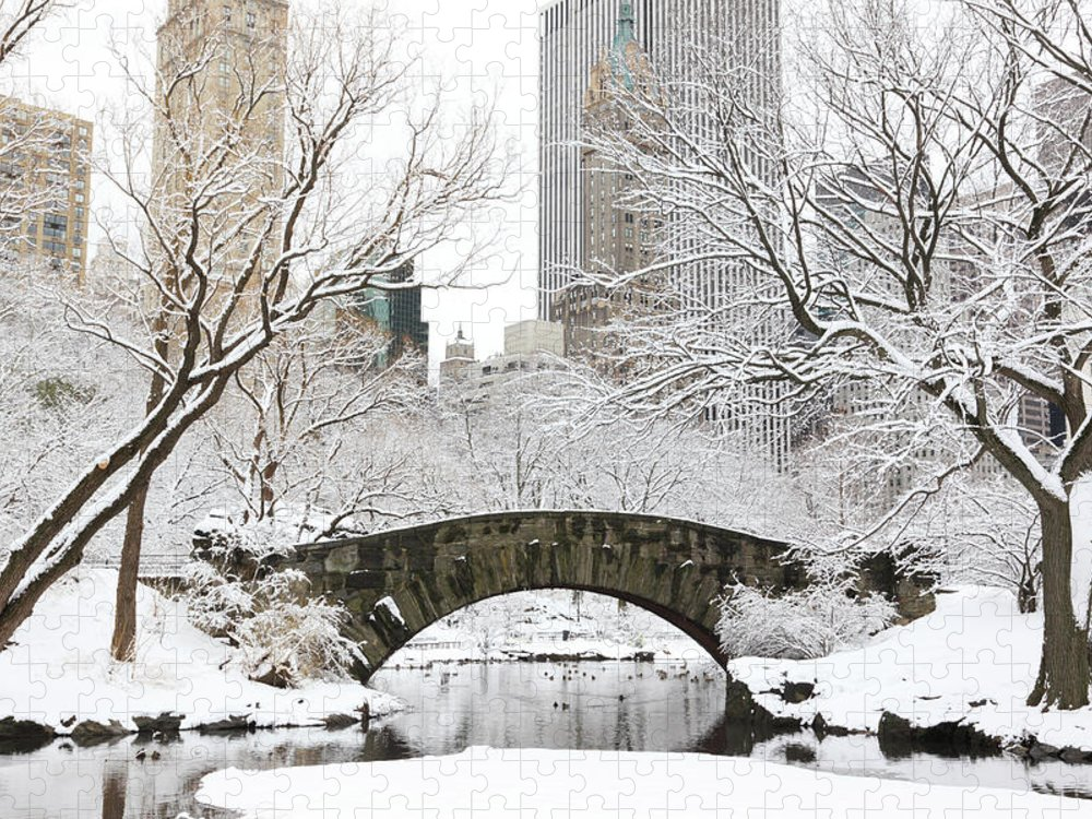 Snow Puzzle featuring the photograph Central Park, New York by Veni