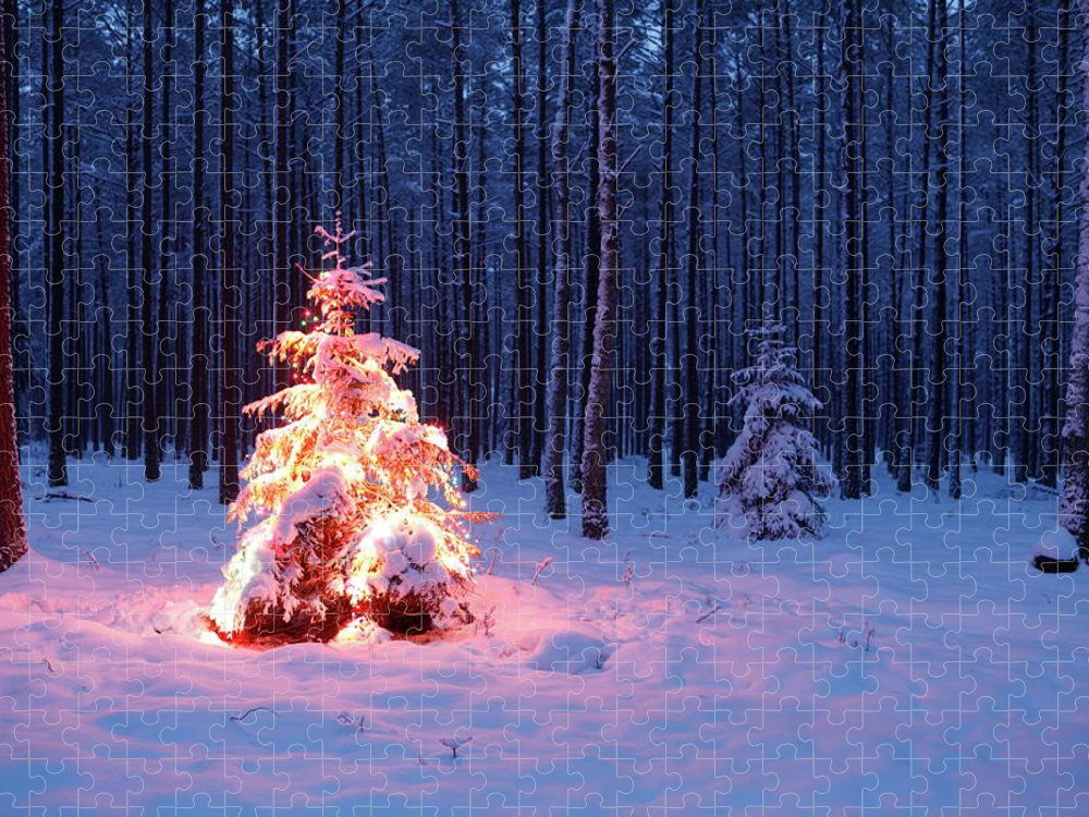 Holiday Puzzle featuring the photograph Christmas Tree by Dariuszpa
