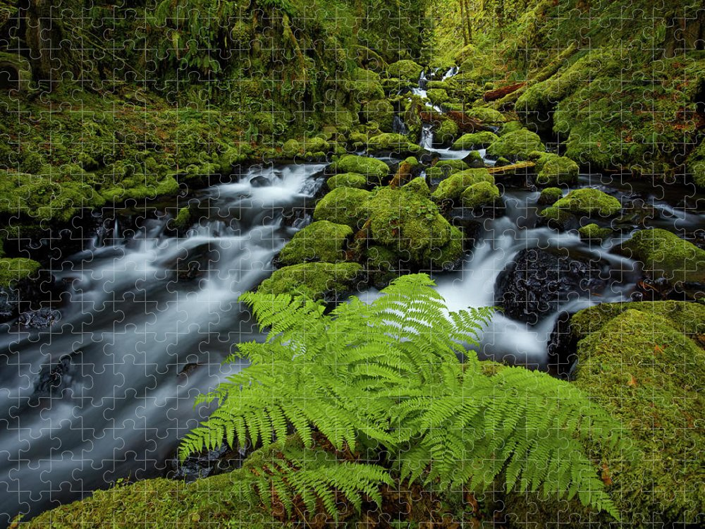 Scenics Puzzle featuring the photograph Columbia Gorge Wilderness by Darren White Photography