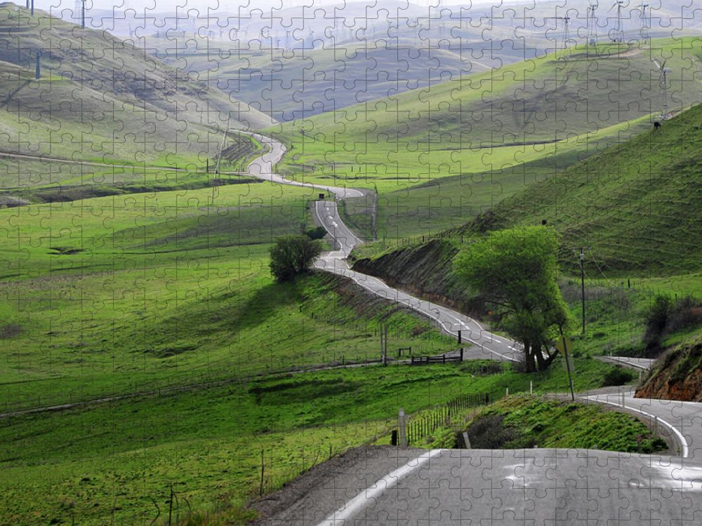 Scenics Puzzle featuring the photograph Country Road Through Green Hills by Mitch Diamond