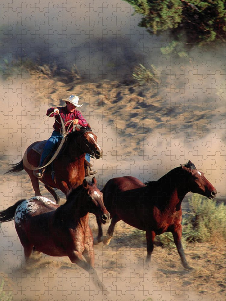 Horse Puzzle featuring the photograph Cowboy Roping Horses by John Luke