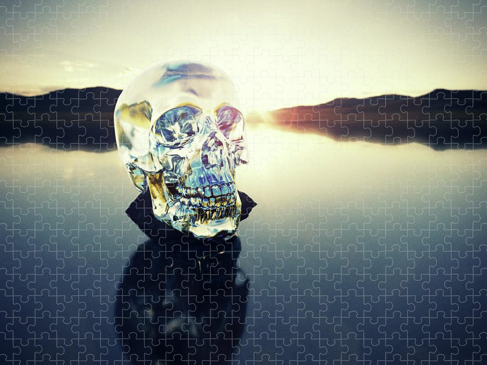 Art Puzzle featuring the photograph Crystal Skull Laying On Rock In Lake by Doug Armand