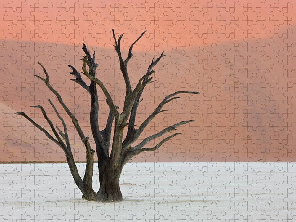 Scenics Puzzle featuring the photograph Dead Vlei Sossusvlei Africa Namibia by Thorsten Milse / Robertharding