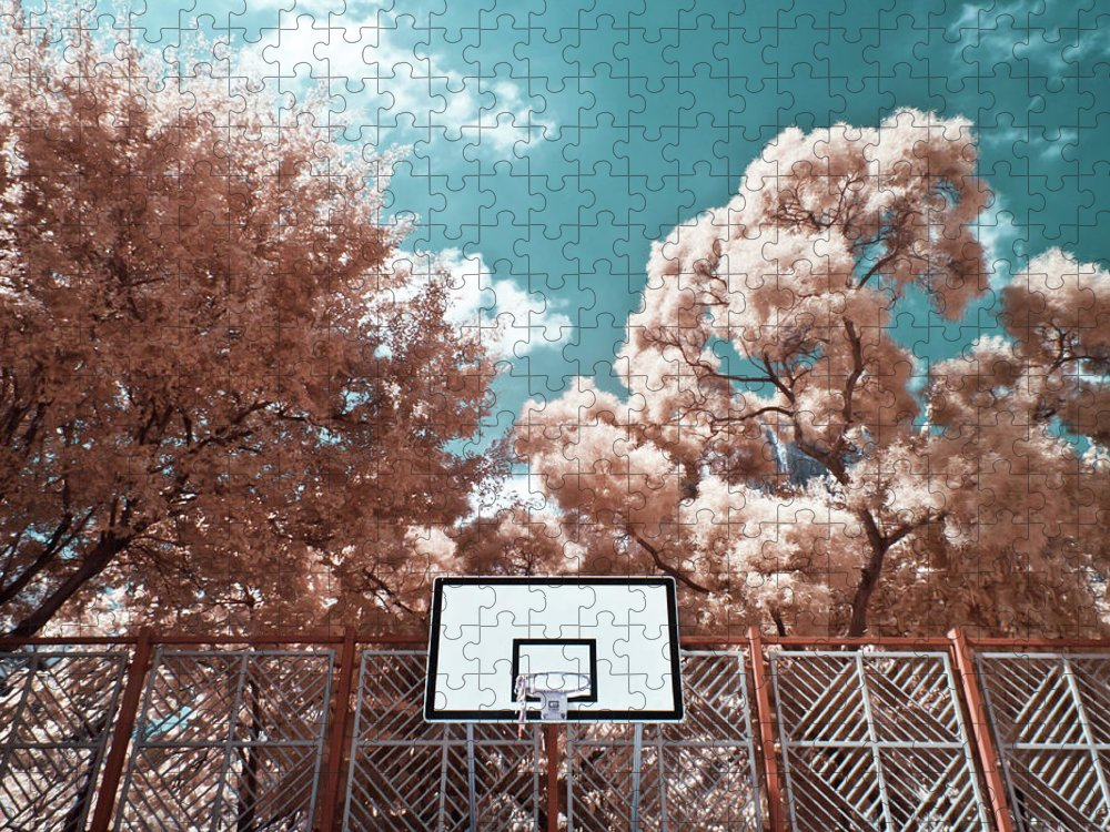 Tranquility Puzzle featuring the photograph Digital Infrared Photos by Terryprince
